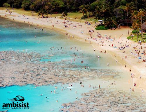 Neteja de platges en temporada alta